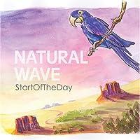 Natural Wave