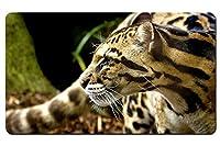 チーターの注意 パターンカスタムの マウスパッド 動物 デスクマット 大 (60cmx35cm)