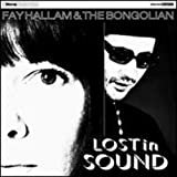 Lost in Sound [12 inch Analog]