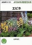 エビネ (NHK趣味の園芸 よくわかる栽培12か月) 画像