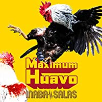 【Amazon.co.jp限定】Maximum Huavo (初回限定盤・CD+DVD)  (メガジャケ2枚付)