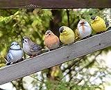 MedianField 【 小鳥 置物 6個 セット 】 ガーデニング 置物 雑貨 庭 庭園 ガーデニング雑貨 動物 鳥 英国風 インテリア おしゃれ かわいい ガーデン (小鳥 セット)