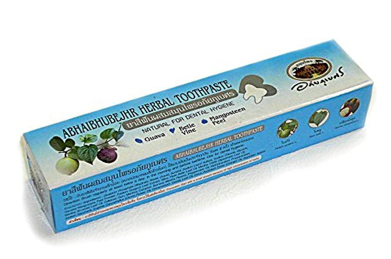 掃く心から準拠ハーバル歯磨き粉 100g [並行輸入品]