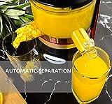 自動ジューサー 多機能 大容量ミキサー ステンレス鋼 ワンボタンクリーニング 低ノイズ 乾式粉砕 150W 画像