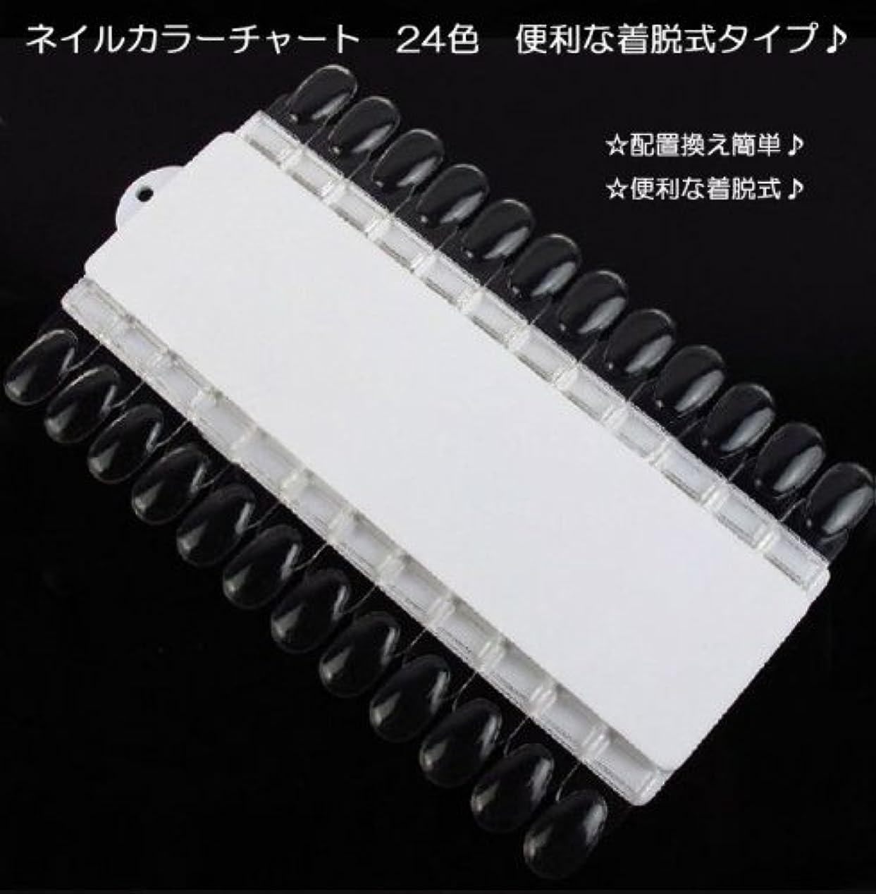 思いやりシンク急いで【新入荷!】ネイルカラーチャート 24色 便利な着脱式タイプ?