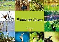 Pointe de Grave - Faune des marais 2018: Un petit apercu de la faune des marais de la Pointe de Grave (Calvendo Nature)