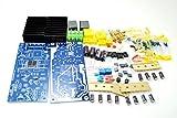 LILLYエレクトロニクス キットボードLJMキットL15D IRS2092 IRFB4019 D級パワーアンプボード+スピーカー保護