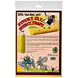Enta Sticky Fly and Insect Trap