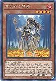 遊戯王カード TDIL-JP031 不知火の陰者 レア 遊戯王アーク・ファイブ [ザ・ダーク・イリュージョン]