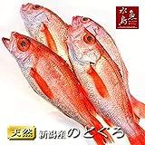 魚水島 のどぐろ 新潟・日本海産 ノドグロ 300g以上・4尾(生冷凍)