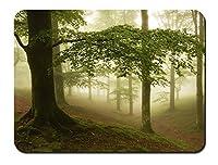霧、森、木 パターンカスタムの マウスパッド 旅行 風景 景色 (26cmx21cm)
