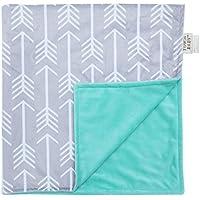 Towin Baby Arrow Minky Receiving Blanket, Mint 30x30 by TOWIN BABY