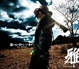 My name iz 俺様.com / 雅-miyavi-