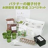 パクチーの種子付き 水耕栽培 育苗・育成ココベジキット