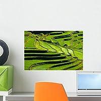 Terraced Rice Fields Yunnan Wall Mural by Wallmonkeys Peel and Stick Graphic (18 in W x 12 in H) WM228075 [並行輸入品]