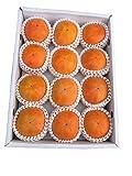 和歌山県産 富有柿 (2Lサイズ12個入り) 青秀品