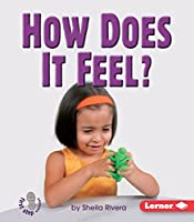 How Does It Feel? (First Step Nonfiction)