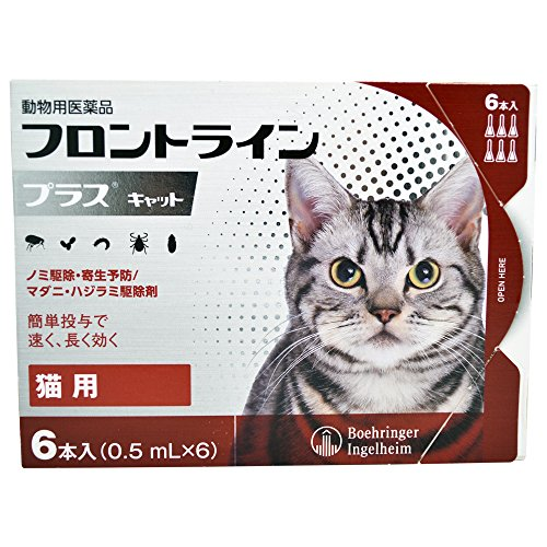 ベーリンガーインゲルハイム アニマルヘルスジャパン フロントライン プラス キャット 6ピペット (動物用医薬品)