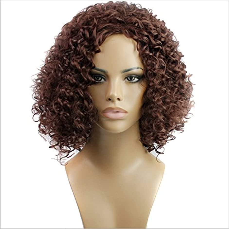 傾向チャンピオン不規則なYOUQIU 長い前髪髪ナチュラルカラーウィッグ耐熱210グラムで女子ショートカーリーウィッグのために15インチの合成高温ウィッグ(ワインレッド、黒)ウィッグ (色 : ワインレッド)