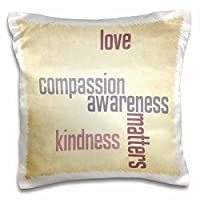 Patricia Sanders Creations–ヴィンテージ紙愛とKindness matters-インスピレーション引用符–枕ケース 16x16 inch Pillow Case pc_33725_1