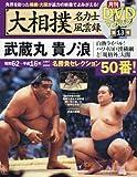 大相撲名力士風雲録 13 (ベースボール・マガジン社分冊百科シリーズ) -