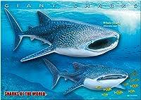ジンベエザメ B5サイズ 330ピース ミュージアム ジグソーパズル