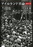 「アイルランド革命 1913-23――第一次世界大戦と二つの国家の誕生」販売ページヘ