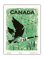 カナダ - ガチョウ - ビンテージな世界旅行のポスター c.1960 - アートポスター - 23cm x 31cm