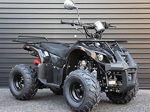 IceBear(アイスベアー) 四輪バギー ATV 50cc 前進1速バック付 ミニカー登録 公道走行可 黒 HL50BB