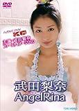 武田梨奈 AngelRina【DVD】