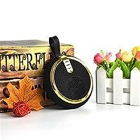 ポータブルbluetoothスピーカー、FMラジオUSB TFカードリーダーミニダストスピーカー,Gold