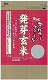 茨城県産 発芽玄米 ミルキークイーン 1�s