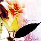 Lily-月影に魅せられて-(DVD付)(在庫あり。)