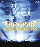 THE SENSE OF OUR LIVES [Blu-ray](在庫あり。)