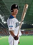 トライエックス 西川遥輝(北海道日本ハムファイターズ) 2020年 カレンダー CL-587 壁掛け B3 プロ野球