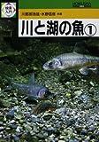 川と湖の魚〈1〉 (検索入門)