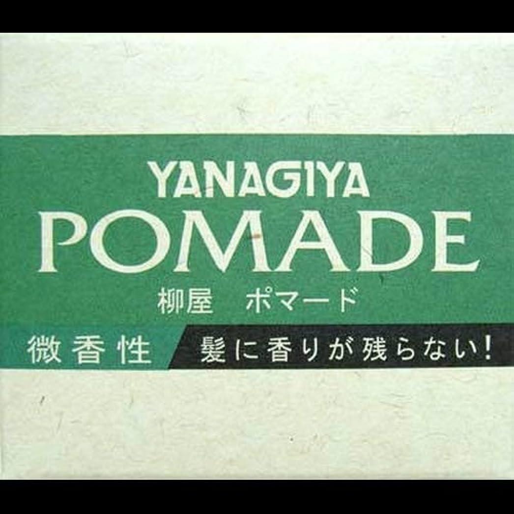 失う非アクティブ既に【まとめ買い】柳屋 ポマード微香性120g ×2セット