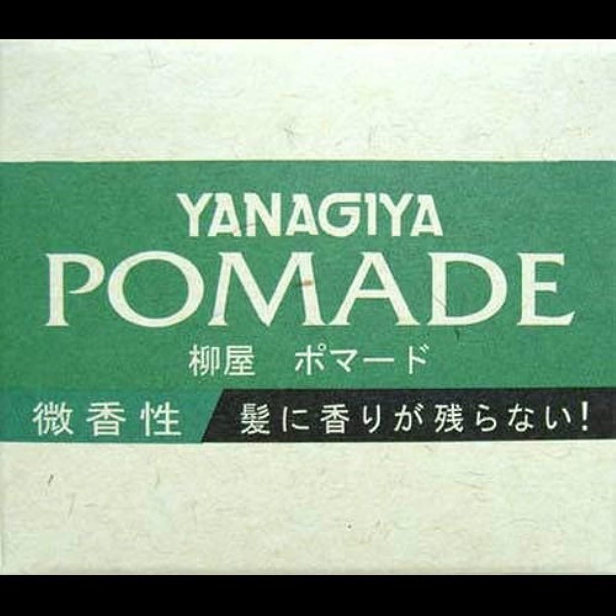 考古学摩擦祝福【まとめ買い】柳屋 ポマード微香性120g ×2セット