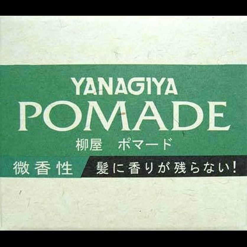 土パレード広げる【まとめ買い】柳屋 ポマード微香性120g ×2セット