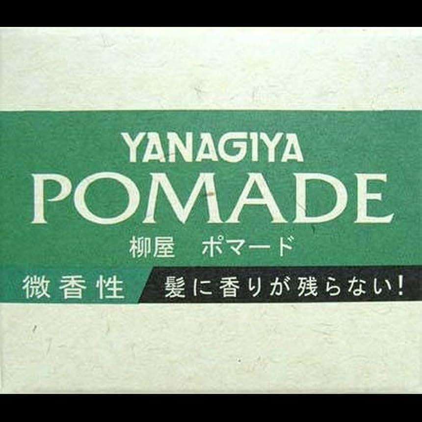 可愛いテレビを見る従者【まとめ買い】柳屋 ポマード微香性120g ×2セット
