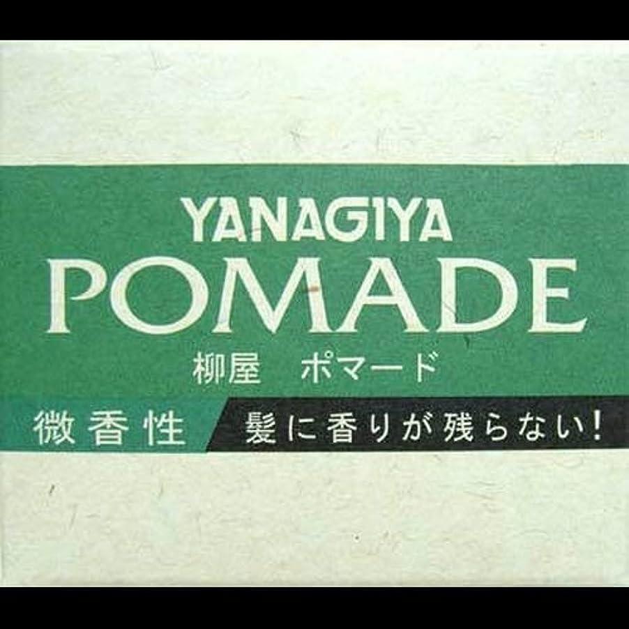 体系的に島不運【まとめ買い】柳屋 ポマード微香性120g ×2セット