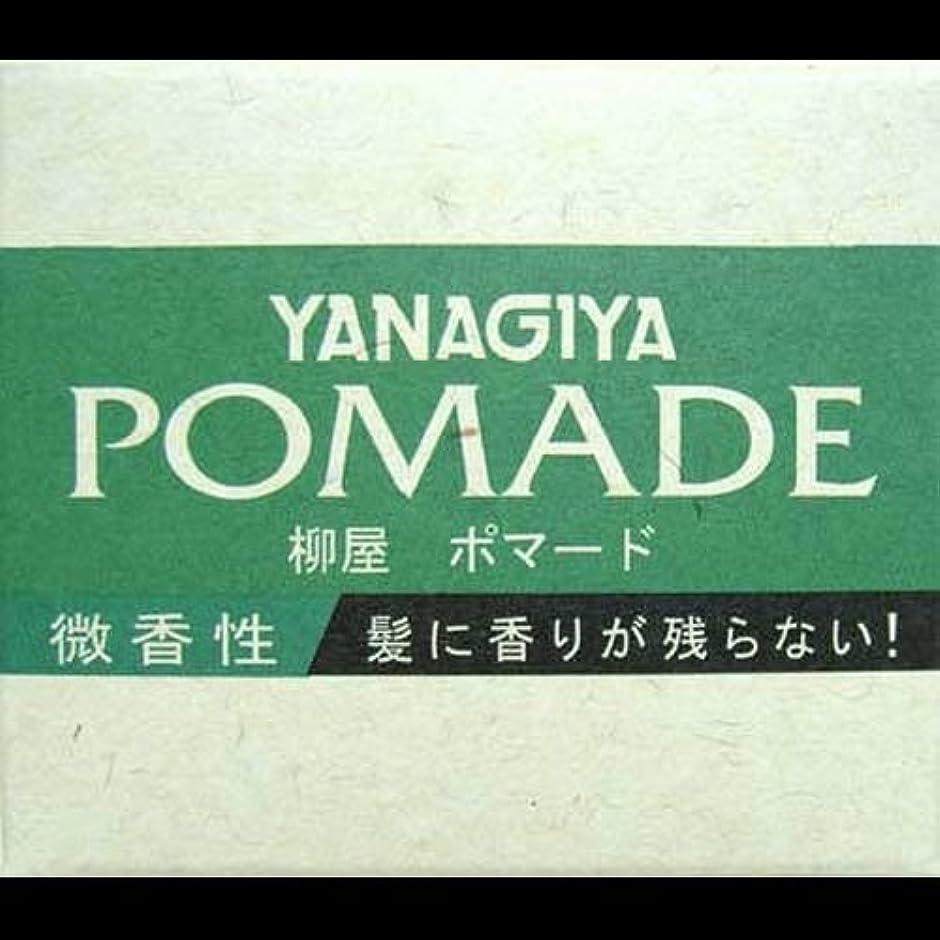 光景無力残基【まとめ買い】柳屋 ポマード微香性120g ×2セット