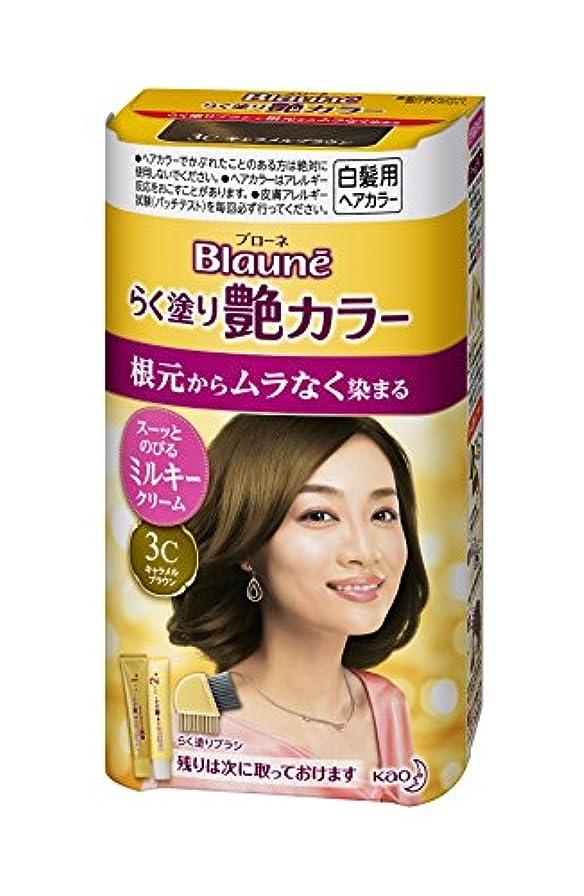 苦味有利トンブローネ らく塗り艶カラー 3C 100g [医薬部外品]
