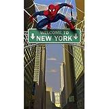 Spider Hero Door Banner スパイダーヒーロードアバナー?ハロウィン?クリスマス?