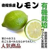 ノンワックス 有機栽培 国産 レモン 10kg