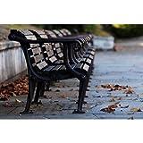 秋のベンチのポストカードphoto by 中澤 敏 葉書ハガキ