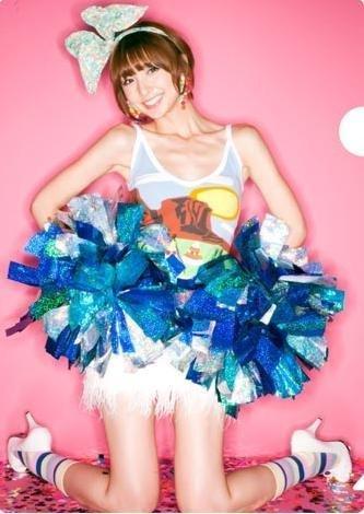 AKB48 クリアファイル 篠田麻里子 A4サイズ オフィシャルカレンダーBOX 2011 付録