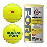 ダンロップ テニスボール DUNLOP FORT[2個入]1箱 KPIオリジナルモデル