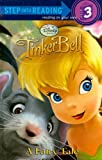 A Fairy Tale (Disney Fairies) (Step into Reading)