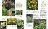 NHK趣味の園芸 日照条件でわかる 宿根草ガイドブック (生活実用シリーズ) 画像